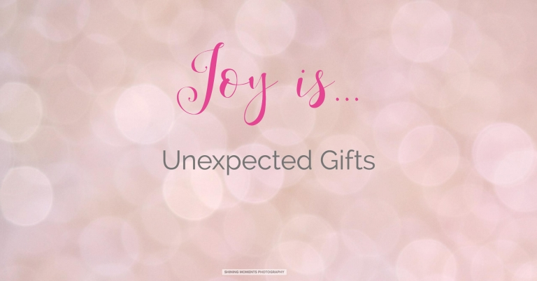 joy-is, smp, 12-days-of-christmas, batavia-il-photogrpaher, photographer-geneva-il, senior-photographer-illinois, senior-portraits-il